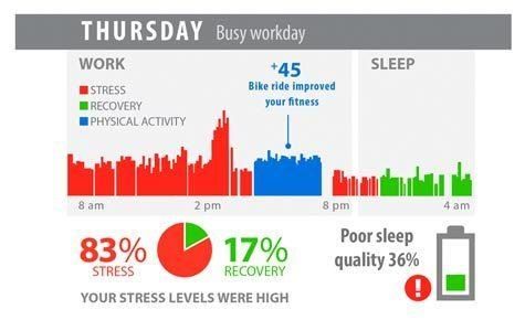 Lifestyle Assessment Example reports show how daily stress, recovery and exercise effect on individuals body