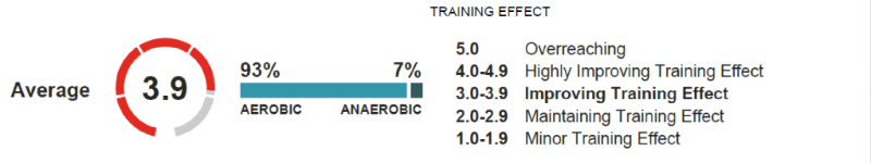 training_effect_insights